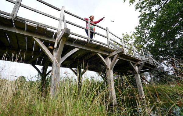 Poohsticks Bridge sale